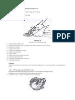 transmisi job sheet.docx