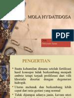 molahydatidosa-130105204022-phpapp02