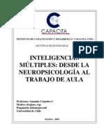 Inteligencias Multiples Desde La Neuropsicologia Al Trabajo