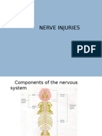 nerve injury.pptx