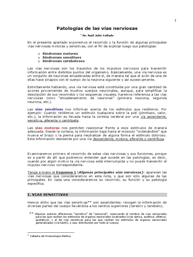 04. Patologias de Las Vias Nerviosas Completas