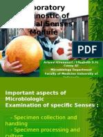 Laboratory Diagnostic of Special Senses Module