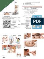 Leaflet Personal Hygiene