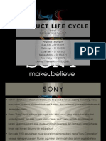Mp Product Life Cycle