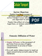 Osmosis Diffusion Active Transport 2