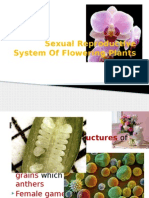 Sexual Reproductive System Of Flowering Plants.pptx