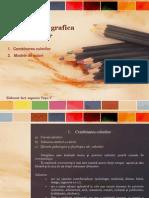 2 Ppt_Culoarea În Grafica Pe Calculator