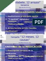 ENE_Campaña de Seguridad_12 meses 12 causas.ppsx
