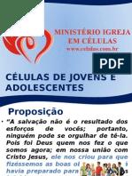 p4 Jovenseadolescentes 111228192251 Phpapp01