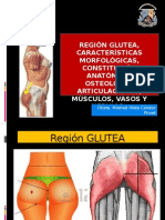 C-15 Region Glutea