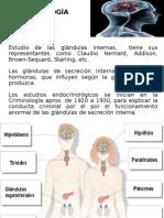 Sistema Endocrino y Genetica