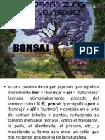 BONSAI Adriana Zuñiga