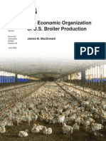 Broiler Production08