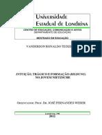 2012_-_TEIXEIRA_Vanderson.pdf