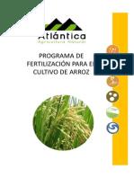 Programa foliar de arroz