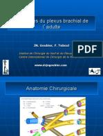 plexus brachial