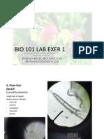 Bio 101 LAB EXER 1
