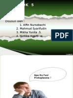 5. Fusi Protoplasma