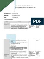 Informe Anual de Funcionamiento Del Pronoei Pampachacra Celia Anaya