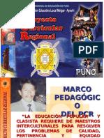 Concepción y enfoque del PCR.ppt