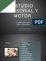 Estudio sensoriomotor- 2014