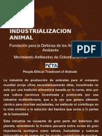 Industrializacion Animal