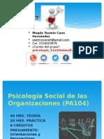 Psicología Social de las Organizaciones (PA104)