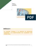 MODULO II. DETECCION-IDENTIFICACION-NEAE.pdf