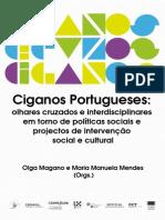 Ciganos+Portugueses_2013
