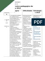 Informe Tecnico 2014- Terminado
