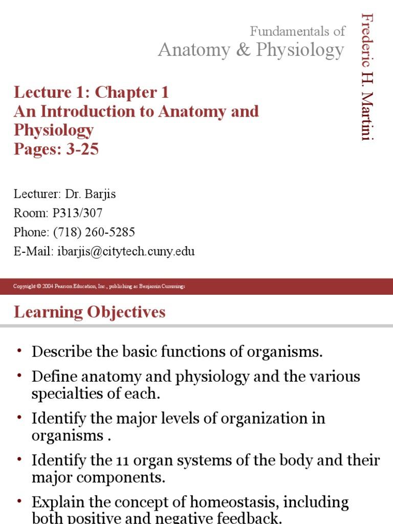 Anatomy and physiology | Homeostasis | Stimulus (Physiology)