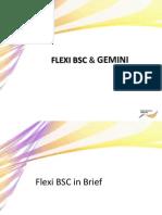 FlexiBscGemini