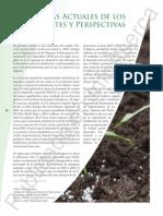 Tendencias Actuales de Los Fertilizantes