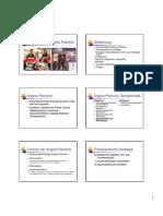 Angina Pectoris-Referat-SS 2010.pdf