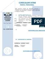 Curriculum Vitae Modelo3c Arena