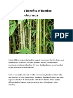 Qualities and Benefits of Bamboo According to Ayurveda