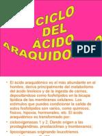 58494193 Ciclo Del Acido Araquidonico