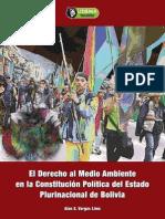 Libro Derecho Al Medioambiente en La Constitucion Politica Del Estado Plurinacional de Bolivia - LIDEMA 2011-Libre