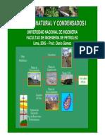 CURSO_GAS_NATURAL_COMPLETO_2005.pdf