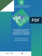 Impacto Socioeconomico de Los Desestres en El Año 2007