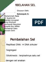 tugas biosel