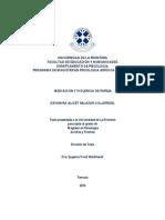 Deyanira Salazar  Magister Psicología Jurídica y Forense.pdf
