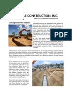 basile brochure 2011-05-02
