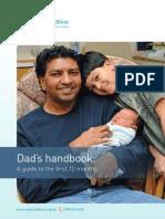 beyond blue dad's handbook