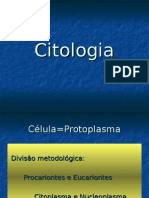 Organelas Nucleo Morfofisiologia