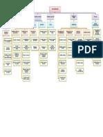 Mapa de Procesos_3