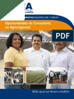 017 Oportunidades de Consultoría en Agronegocios