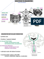 (06!03!03) -Introduction to the Brainstem