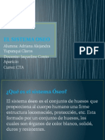 EL SISTEMA OSEO.pptx