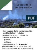 Causas de la contaminación.pptx